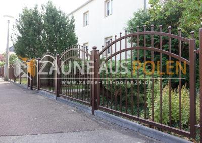 Halle (3)